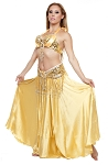 Beaded Satin Belly Dance Costume with Sequin Butterfly Design - GOLD