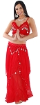 2-Piece Belly Dancer Costume with Coins - RED / SILVER