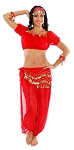Glitter Genie Harem Costume with Coins - RED
