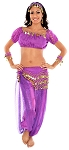Glitter Genie Harem Costume with Coins - PURPLE