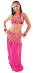 6-Piece Deluxe Harem Dancer Genie Costume - JEANNIE PINK