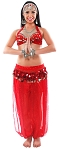 6-Piece LIMITED EDITION Belly Dancer Harem Genie Costume - RED
