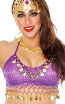 Sparkle Belly Dance Costume Top with Coins - PURPLE