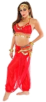 Sexy Belly Dancer Genie Costume with Sparkle Top & Harem Pants  - RED