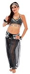 Belly Dancer Genie Costume with Sparkle Top & Harem Pants  - BLACK / SILVER