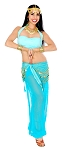 Arabian Belly Dancer Harem Pants Costume - Jasmine Green