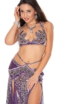 CAIRO COLLECTION: Professional Belly Dance Costume from Egypt - PURPLE SAFARI