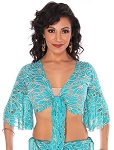 2-Tone Lace Bell Sleeve Choli Top - TURQUOISE