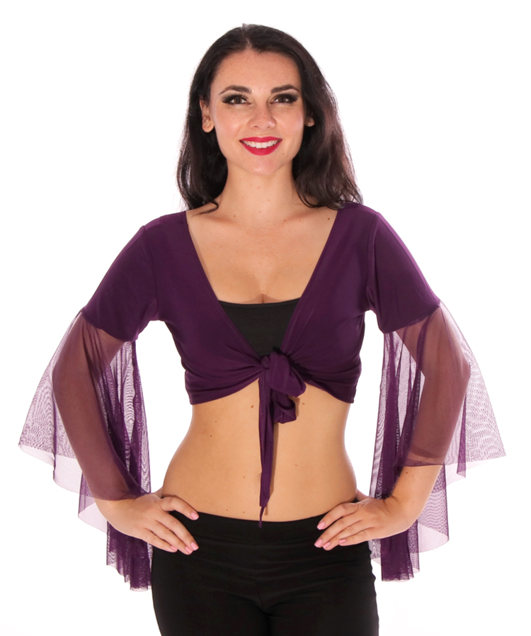 Choli Top with Mesh Butterfly Sleeves - DARK PURPLE PLUM