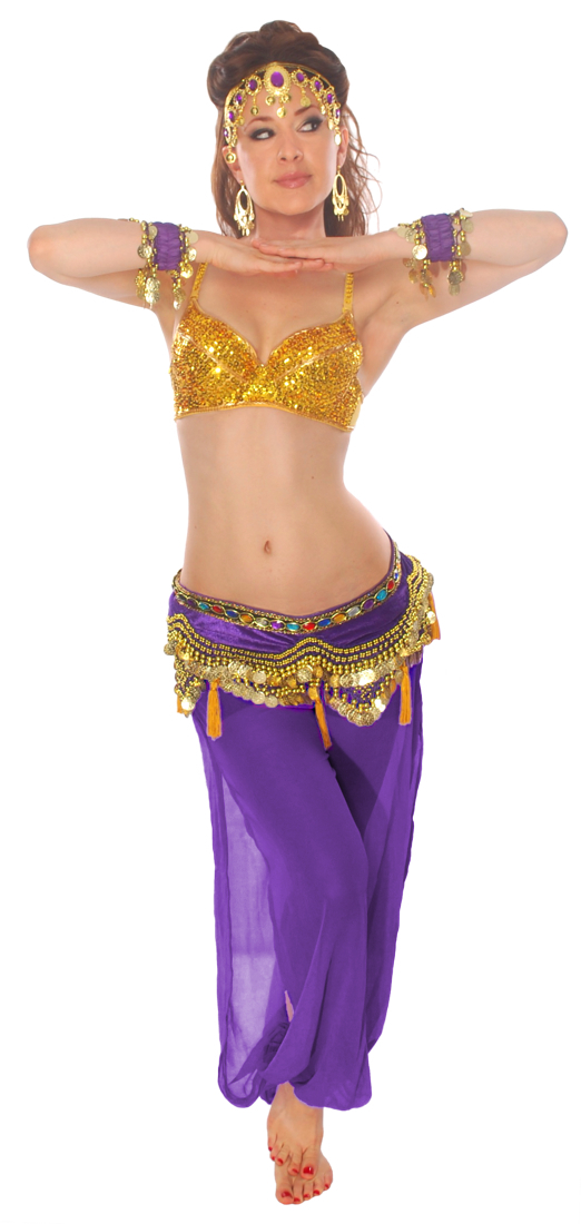 8fd2bd5aa 7-Piece As You Wish Genie Belly Dancer Costume in Purple and Gold