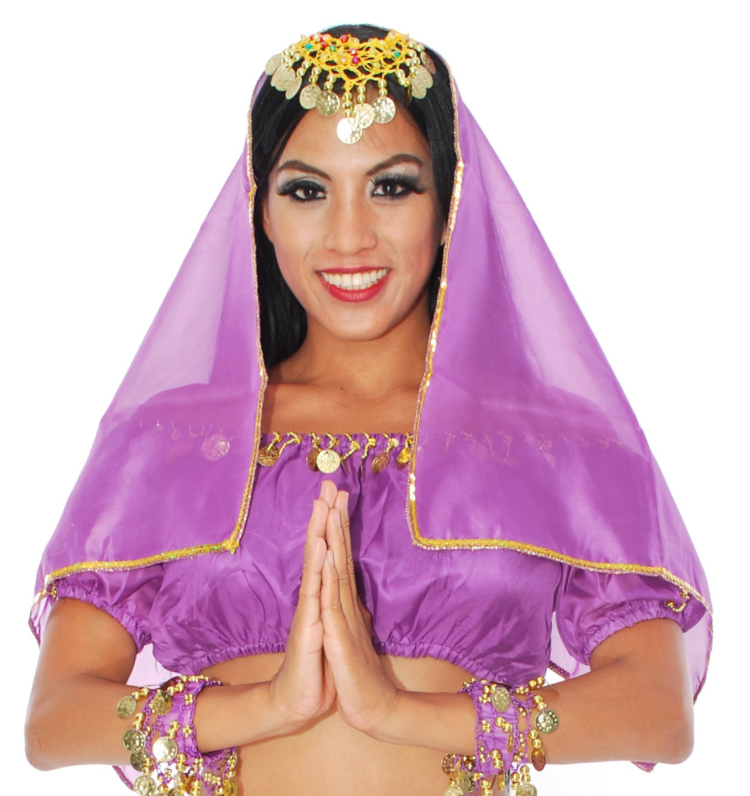 Chiffon Head Veil with Gold Trim - PURPLE