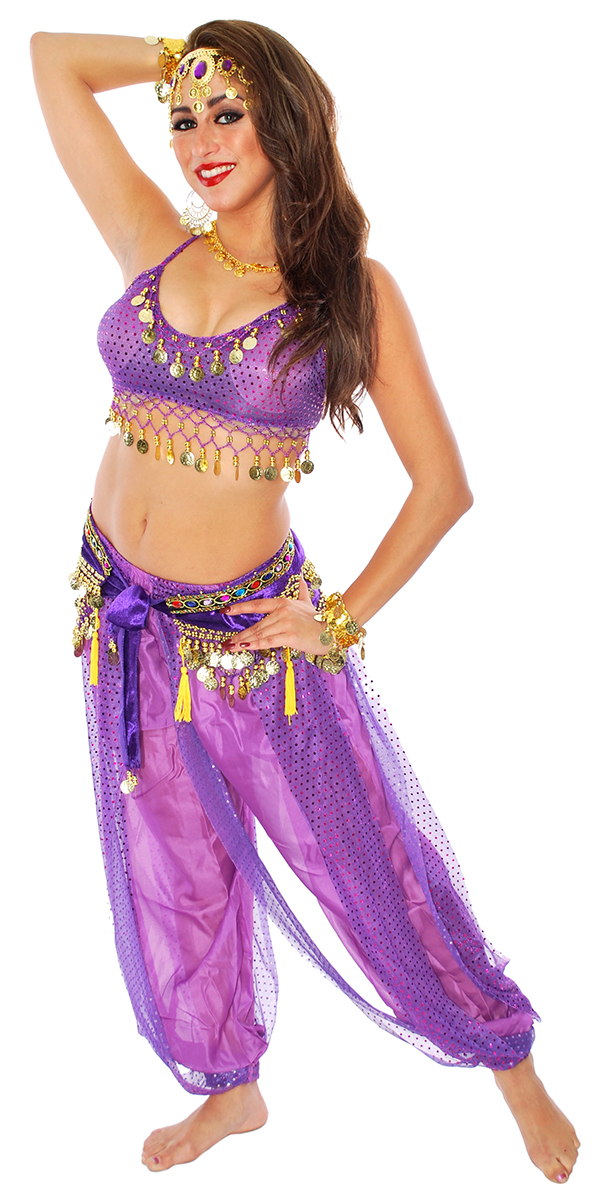 Belly Dancer Genie Costume with Sparkle Top & Harem Pants  - PURPLE