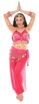 6-Piece Harem Genie Belly Dancer Costume - ROSE / GOLD