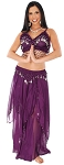 2-Piece Belly Dancer Costume with Coins - DARK PURPLE PLUM / SILVER