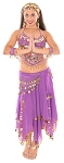 Arabian Belly Dancer Costume with Coins & Paillettes - PURPLE