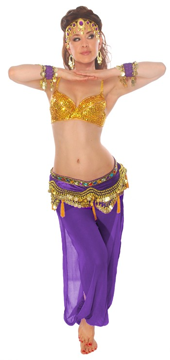 "7-Piece ""As You Wish"" Harem Pants Belly Dance Costume - PURPLE / GOLD"